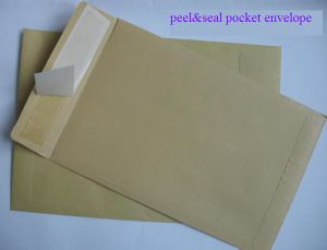 Peel/Seal Envelopes pictures & photos