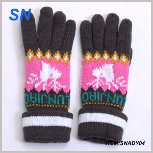Wholesale Fashion Knit Lady Winter Glove China Supplier pictures & photos