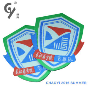 Chaoyi Embroidery Badge Embroidery Patch for Sports Cloth or Kids Cloth
