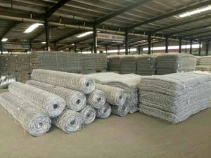 Hot Sale Best Price Wire 2.7mm 6X8 & 8X10cm 2*1*1m Gabion Baskets Wall pictures & photos