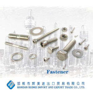 High-Grade Fasteners, Stainless Steel pictures & photos