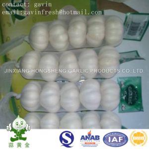 Chinese Pure White Garlic Size 5.0cm 200gram Small Packing