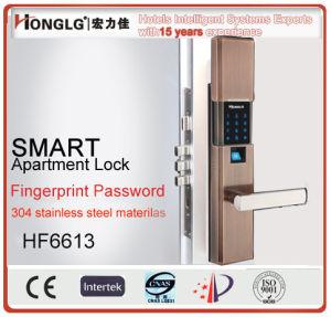 High-End Aluminium-Magnesium Alloy Electric Door Lock (HF6613) pictures & photos