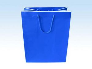 White Kraft Paper Shopping Gift Bags for Garments (FLP-8958) pictures & photos