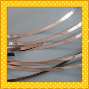 310S Narrow Stainless Steel Strip pictures & photos
