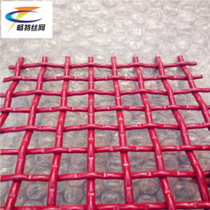 Vibrating Screen Mesh China pictures & photos