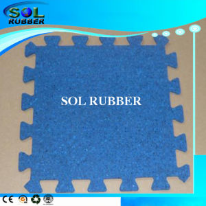 High Quality Anti Staic Fitness Floor Rubber Mat pictures & photos