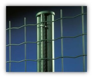Galvanized PVC Coated Welded Wire Mesh Fence pictures & photos