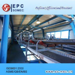 Power Plant Equipment Supply - Coal Conveying System pictures & photos