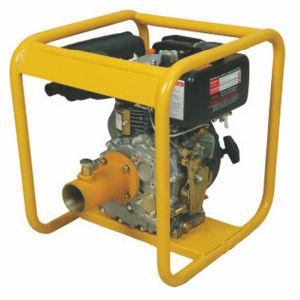 Diesel Engine Concrete Vibrator pictures & photos