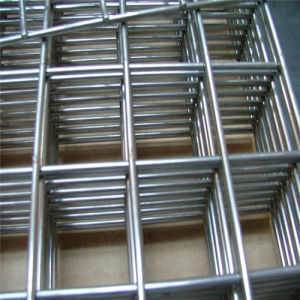 Welded Wire Mesh for Concrete Reinforcement pictures & photos