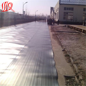 PVC Waterproof Membrane Used in Roof Garden pictures & photos