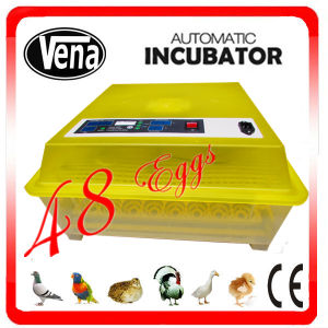 Best Seller Automatic Mini Chicken Egg Incubator Va-48 for Sale pictures & photos