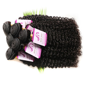 Brazilian Afro Kinky Curly Virgin Hair 3 Bundles 7A Brazilian Virgin Hair Curly Hair Wet and Wavy Ombre Human Curly Hair Weave pictures & photos