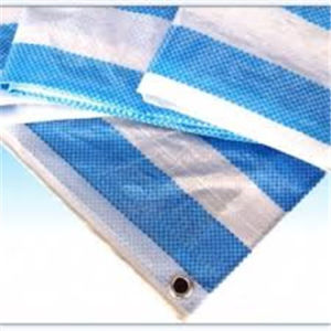 Blue White Blue Stripe PE Tarpaulin 100GSM pictures & photos