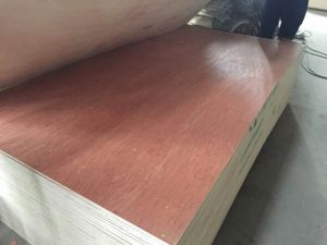 Good Bintangor Plywood/Commercial Plywood pictures & photos