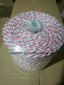 High Strength Electric Polyrope pictures & photos