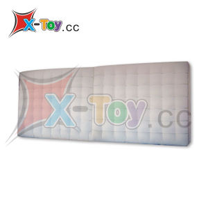 Custom Inflatable Event Decoration/LED Display Screen