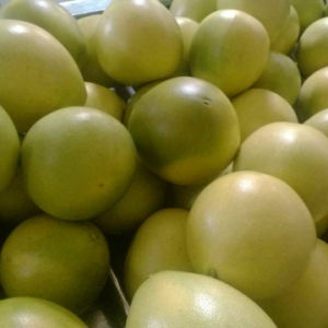 New Crop Fresh Pomelo pictures & photos