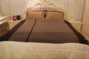 Yak Wool Striped Blankets/ Yak Cashmere Fabric/Textile/Bedding pictures & photos