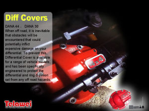 Iron Differential Cover with Red Color pictures & photos