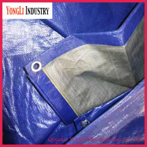 High Quality HDPE Tarpaulin Tent PVC Tarpaulin for Kenya Uganda pictures & photos