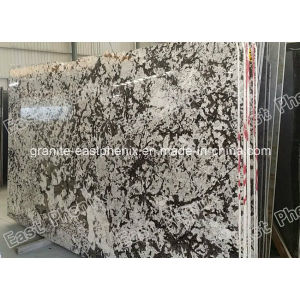 Brazil Granite Slab for Sale pictures & photos