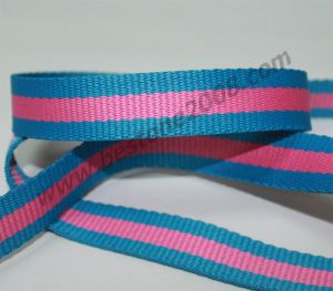 Factory Manufactured Polyester Webbing Belt for Garment#1502-10b pictures & photos