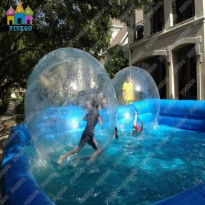 1.0mm PVC/TPU Giant Popular Summer Playing pictures & photos