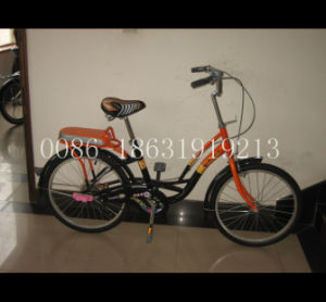 20 Inch Bicycle Lady Bicycle Steel Frame City Bike (HC-LD-2080) pictures & photos