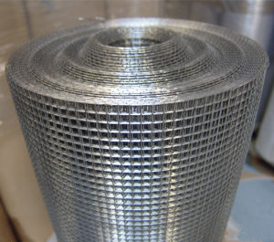 Anping Factory Galvanized Welded Wire Mesh pictures & photos