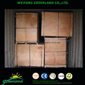Bintangor Film Plywood with High Quality Poplar Core, Mr Glue pictures & photos