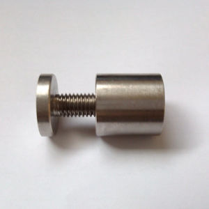 Stainless Steel Ss304 Mirror Screw pictures & photos