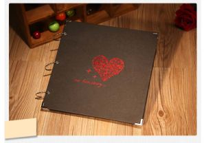Black Paper Decoration Scrapbook for DIY Kits 1254 pictures & photos