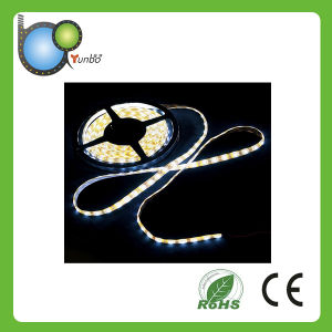 High Quality Low Cost SMD3528 Strip LED pictures & photos