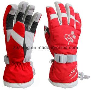Ski Gloves (ZSSG-0005)