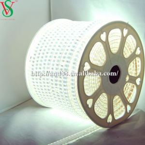 230V SMD 5050 Flexible LED Strip Light pictures & photos