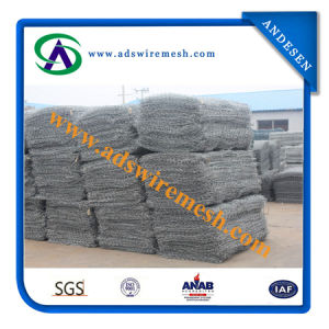 Galvanized Hexagonal Gabion Box/Gabion Mesh pictures & photos