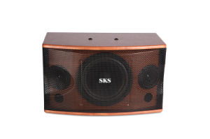 Professional Karaoke Speaker pictures & photos