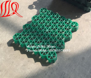 Plastic Grass Paver with Best Price pictures & photos