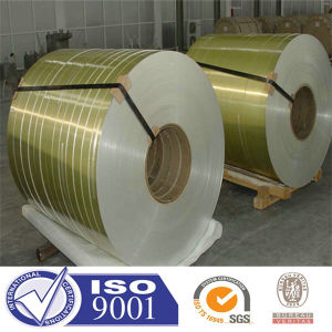 Various Color Coated Steel Coil/PPGI/Prepainted Steel Sheet