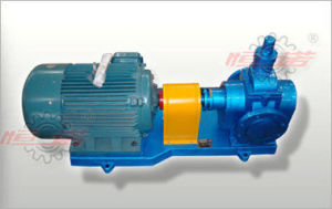 Ycb Series Lube Oil Gear Pump pictures & photos