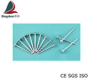 High Quality Umbrella Head Roofing Nails (gentiana)