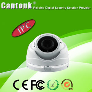 China Top 3 CCTV Camera Factory with 290 Sony Sensor IP66 IP Dome Camera pictures & photos
