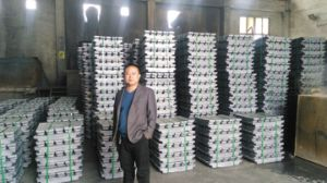 Lead Ingots 99.97% by Best Manufacturer pictures & photos