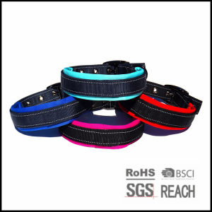Reflective Thick Padded Nylon Pet Dog Collar for Large Dog pictures & photos