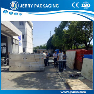 Automatic Granule/Powder/ Liquid Packing Machine for Stand-up/Flat Pouch pictures & photos
