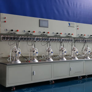 Ten Union 1 Liters Glass Bioreactor pictures & photos