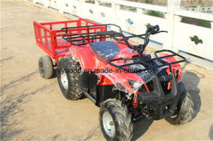 125cc Mini, Electric ATV for Farm Sporting pictures & photos