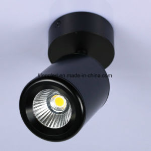 New Designed Factory 360d Adjustable Surface Mounted LED Downlight, CREE COB Chip pictures & photos